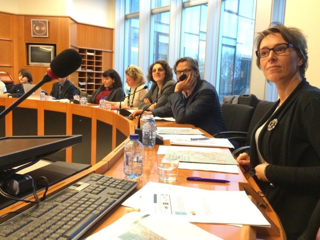 Martina Dlabajova, MEP, Board Member Intergroup Creative Industries.